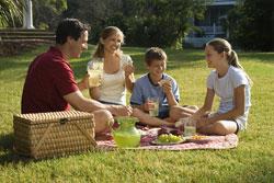 picnic-safety